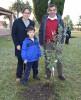 IAU planta familia.JPG